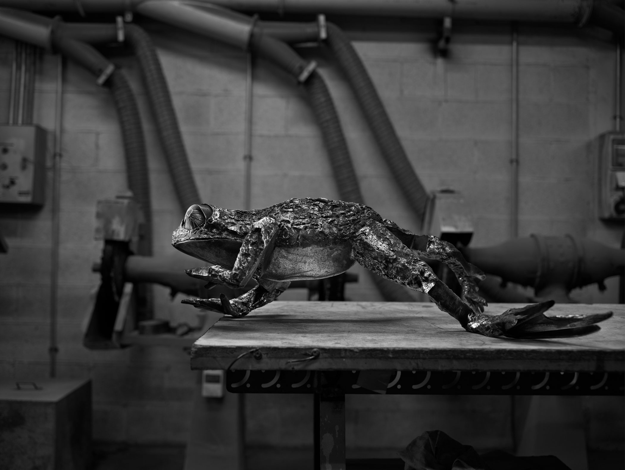 Katherine Taylor FROGS project, finishing phase. Stainless steel. Alfa Arte