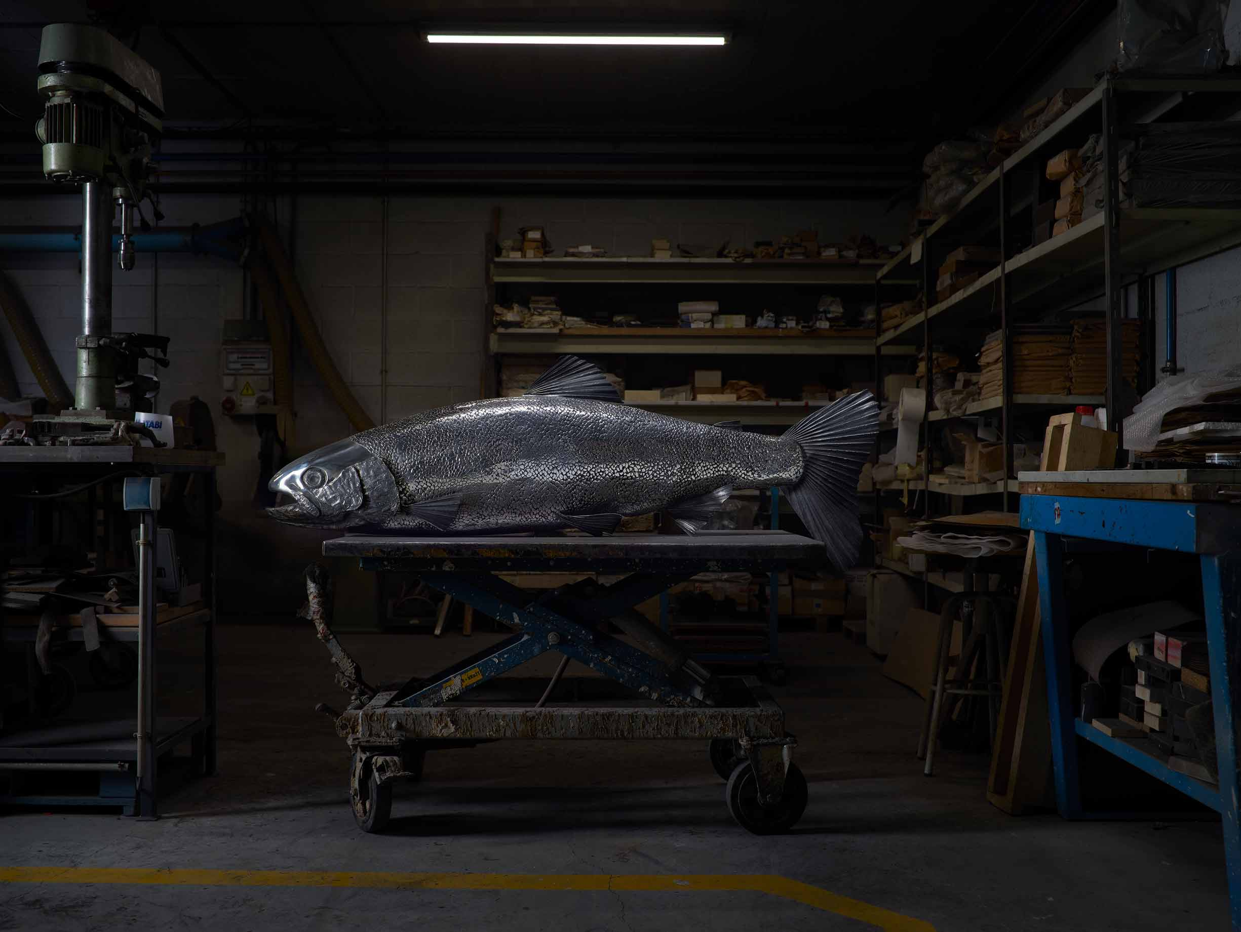 TROUT Stainless sculpture  by Katherine Taylor. Cast in Alfa Arte Foundry